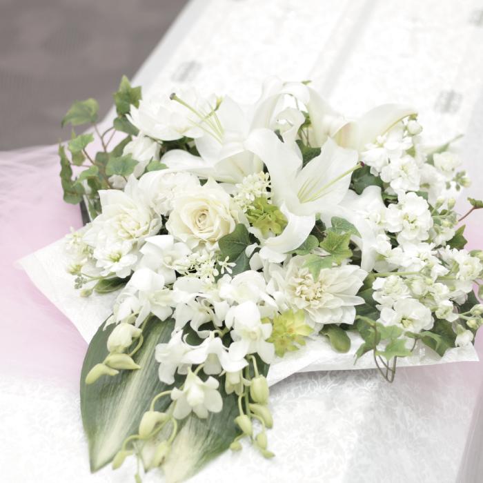 白い切り花
