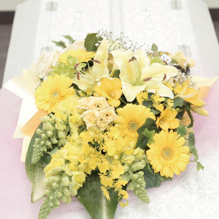 黄色の切り花イメージ