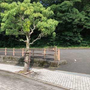 飯塚市斎場駐車場